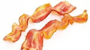 bacon grasa