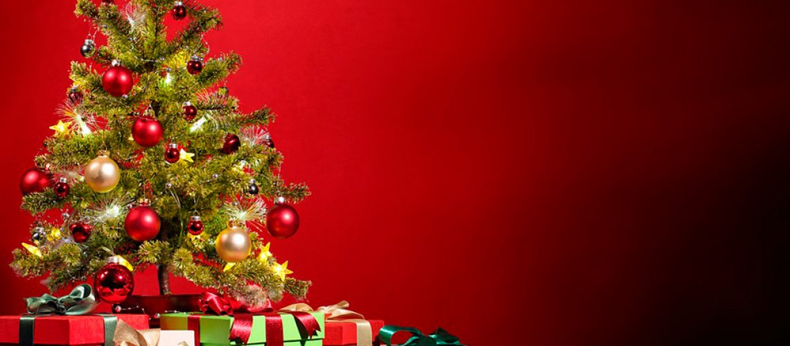 Nuestra querida navidad